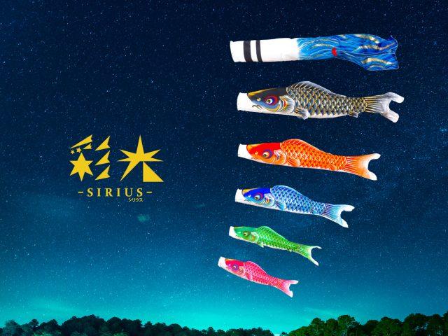 鯉のぼり「SIRIUS-彩光-」新登場!!